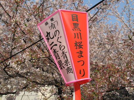Ca20084m3sakura05