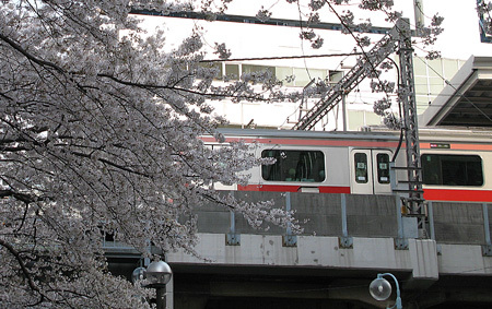 Ca20084m3sakura075